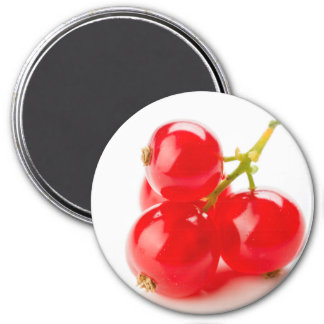 Red currant group 3 inch round magnet