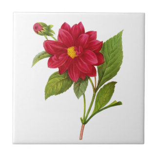 Red Dahlia by Pierre Joseph Redoute Ceramic Tile