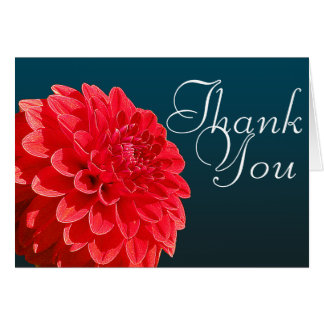 Red Dahlia Flower Close-up Photo Floral Thank You Card