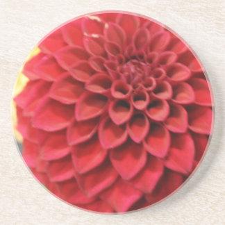 Red Dahlia Flower Coaster