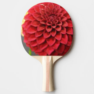 Red Dahlia Flower Ping Pong Paddle