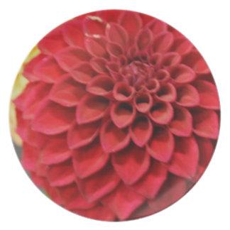 Red Dahlia Flower Plate