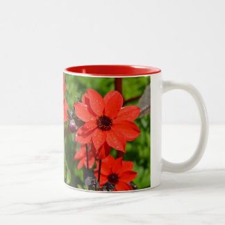 Red dahlia flower print coffee mug