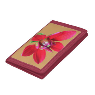 Red Dahlia Photo Wallet