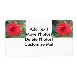 Red Dahlia Plant Shipping Label