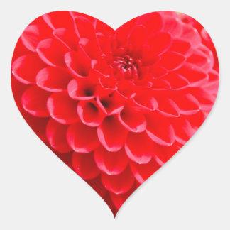 Red Dahlias in the Summer Heart Sticker