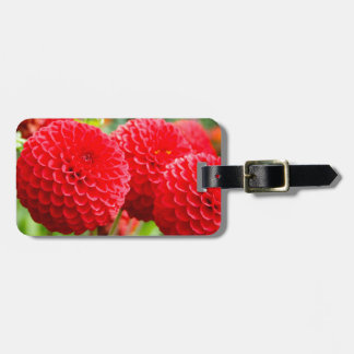 Red Dahlias in the Summer Luggage Tag