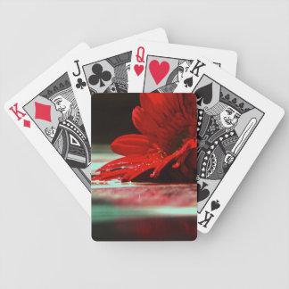 Red Daisy Gerbera Flower Poker Deck