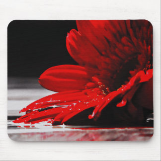 Red Daisy Gerbera Flowers Mouse Pad