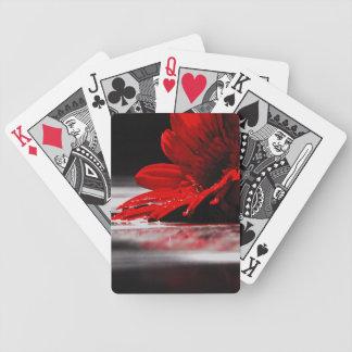 Red Daisy Gerbera Flowers Poker Deck