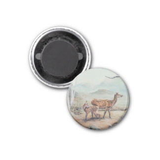 Red deer hind and fawn. 1 inch round magnet