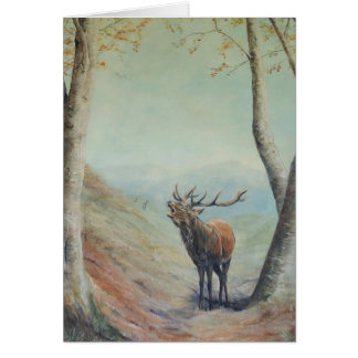 Red deer stag bellowing  happy Birthday card