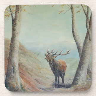 Red deer stag bellowing in a highland glen. coaster