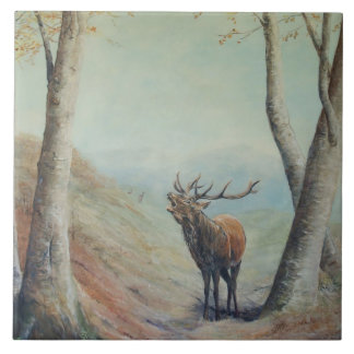 Red deer stag bellowing in a highland glen. tile