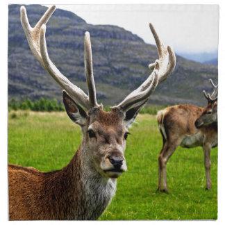 Red Deer Stag Napkin