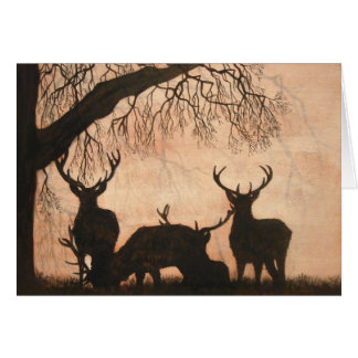Red Deer Stags Card