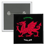 Red Dragon of Wales (Cymru),Black, White,Green Pin