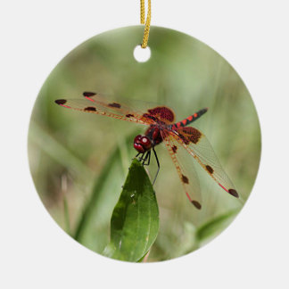 Red dragonfly ceramic ornament