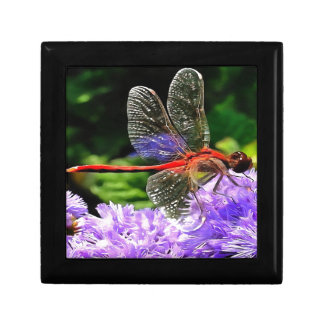 Red Dragonfly on Violet Purple Flowers Jewelry Box