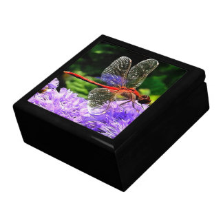 Red Dragonfly on Violet Purple Flowers Keepsake Boxes