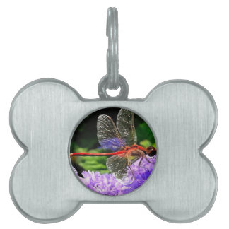 Red Dragonfly on Violet Purple Flowers Pet Name Tag