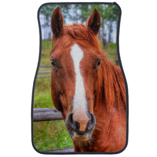 Red Dun Horse Guardian Mare Equine Photo Car Mat