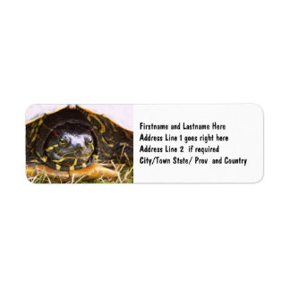 Red Eared Slider Turtle Head Return Address Label