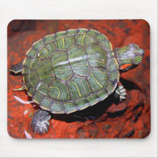 Red-eared Turtle Mouse Pad