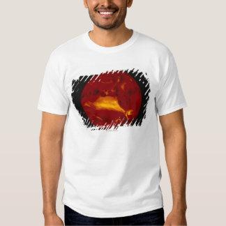 Red Earth Tshirts