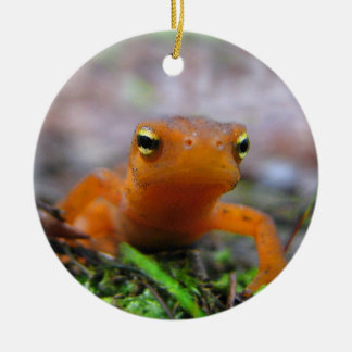 Red Eft Christmas Ornament