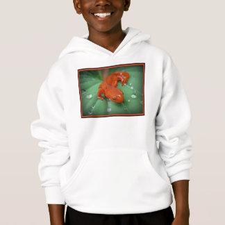 Red Eft/newt