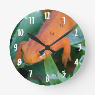 Red Eft Orange Salamander Nature Round Clock