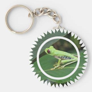 Red Eye Green Tree Frog Keychain