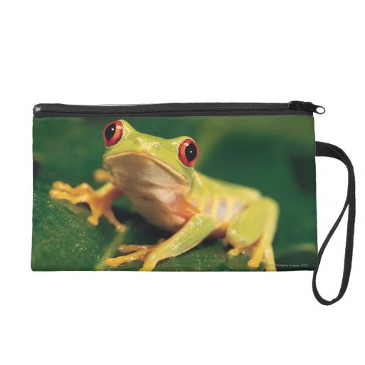 Red eye tree frog wristlet purses
