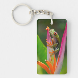 Red-eye tree frog, Costa Rica 2 Rectangular Acrylic Key Chain