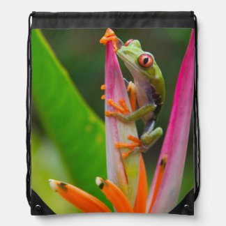 Red-eye tree frog, Costa Rica 2 Drawstring Bags