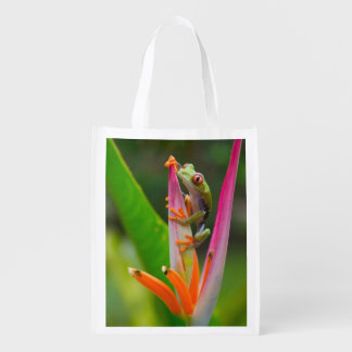 Red-eye tree frog, Costa Rica 2 Reusable Grocery Bag