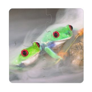Red Eye Treefrog in the mist, Agalychinis 2 Drink Coaster Puzzle