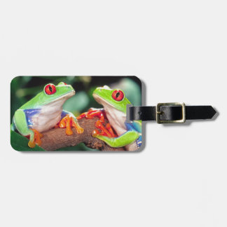 Red Eye Treefrog Pair, Agalychinis callidryas, Luggage Tag