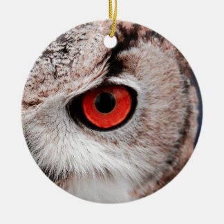Red-Eyed Owl Ceramic Ornament