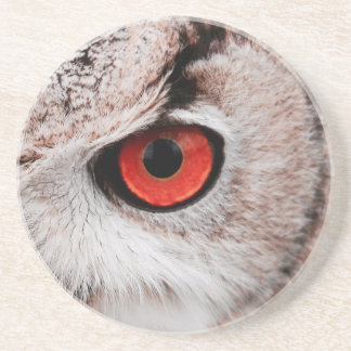 Red-Eyed Owl Coaster
