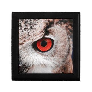 Red-Eyed Owl Gift Box