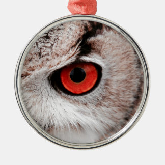 Red-Eyed Owl Metal Ornament