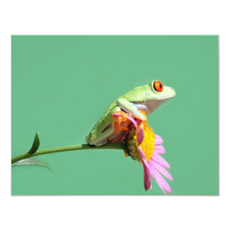 "red eyed tree frog 4.25"" x 5.5"" invitation card"