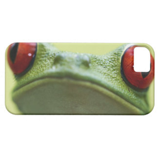 Red-eyed tree frog (Agalychnis callidryas) Case For The iPhone 5