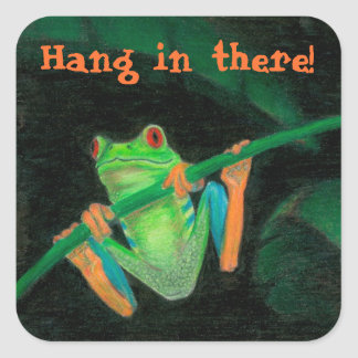 "Red-Eyed Tree Frog ""Hang In There!"" Square Sticker"