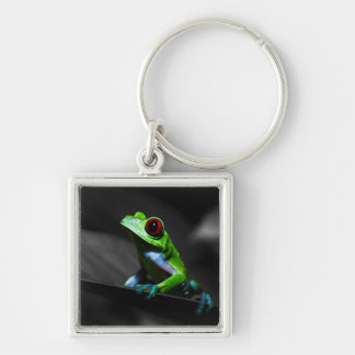 Red Eyed Tree Frog III Silver-Colored Square Keychain