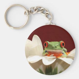 red eyed tree frog basic round button keychain
