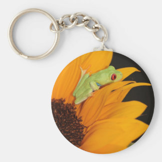 red eyed tree frog basic round button keychain
