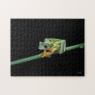 Red-eyed Tree Frog Piggyback Ride Puzzle